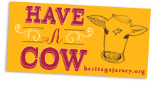 'Have a Cow' bumper sticker