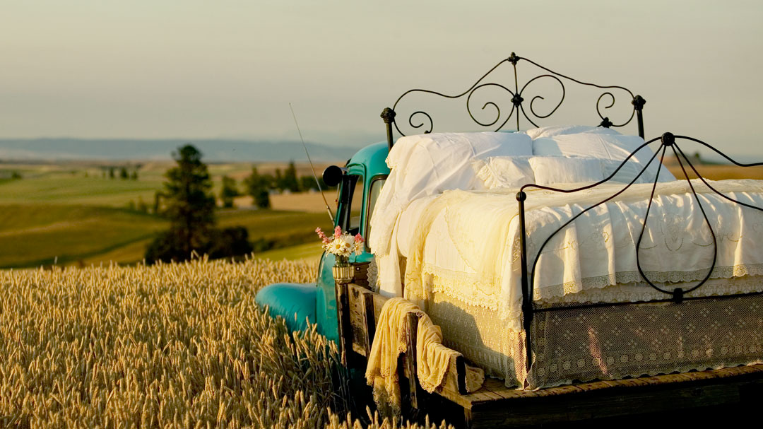 classic truck with cast-iron bed on the back in the wheat fields